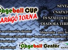 Diadora Cageball CUP